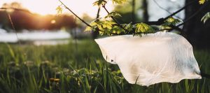 Plastic Bag Bans and Beyond
